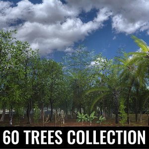3D trees acacias palms maples model