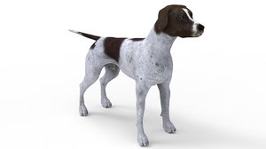 3D german shorthair