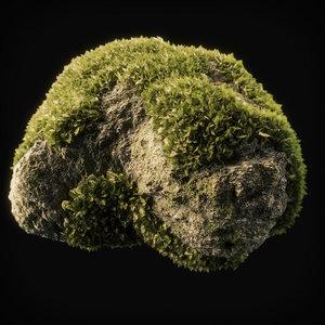 3D moss 8
