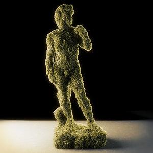 3D moss 5