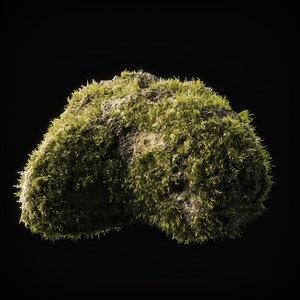 3D moss 14 model