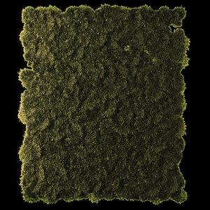 3D moss disk set model