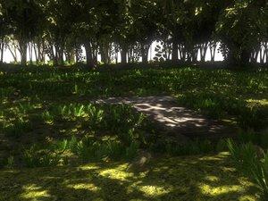 3D swamp nature