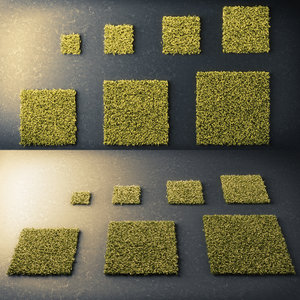 3D moss square model