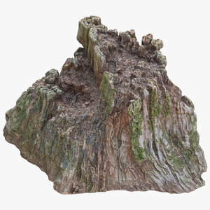 3D tree stump 06 model