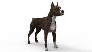 3D model staffordshire bull terrier