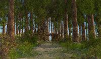 Fantasy Path Forest