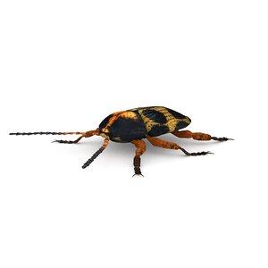3D ten-spotted pot beetle model