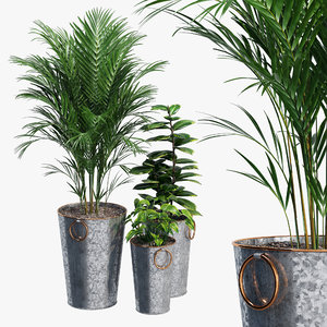 lillian galvanized planters model