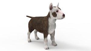 pup bull terrier 3D model