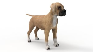 3D pup great dane