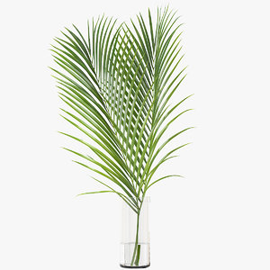 3D model palm leaves