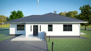 3D residental house structural