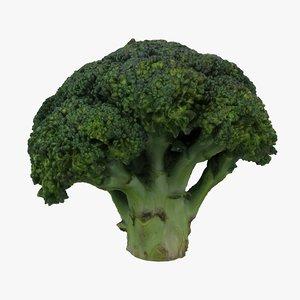 broccoli model