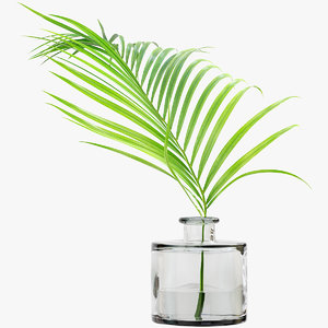 3D model palm leaf