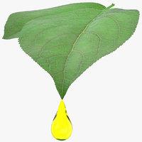 Oil Drop On A Leaf