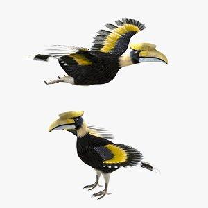 3D bird horn