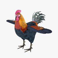 Rooster Bird Rigged