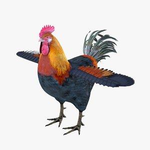 bird rooster model