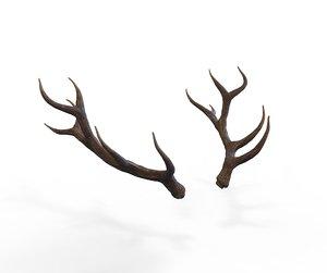 3D horns deer model