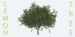 3D lemon tree pack