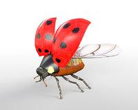 Ladybug Insect Rigged