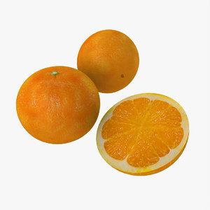 fruits model