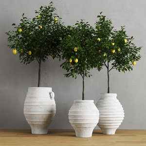 3D model lemons traditional mediterranean vases