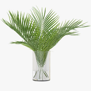 3D palm leaves