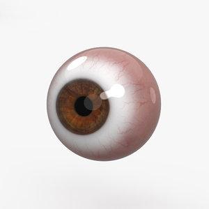 3D human eye man model