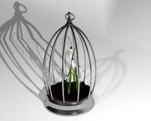 3D snowdrop flowers cage