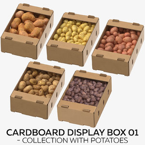 3D cardboard display box 01 model