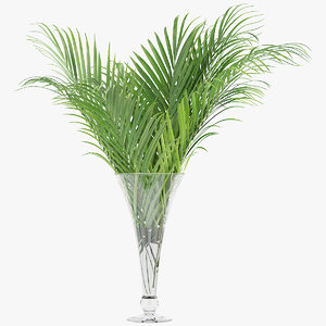 3D palm leaves model