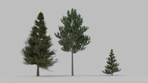 3 trees 3D model