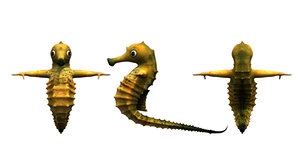 3D sea horse cartoon