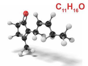 3D model jasmone molecule c11h16o modeled