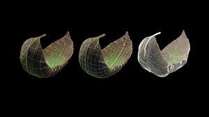 3D tea leaf animation