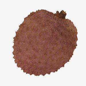 lychee 04 raw scan model