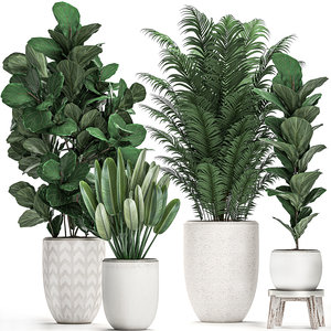 plants white pots interior 3D model
