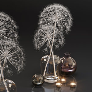 3D heracleum plant white decor model