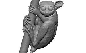 3D model tarsier branch eyes