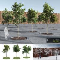 Eleven Trees (+GrowFX)