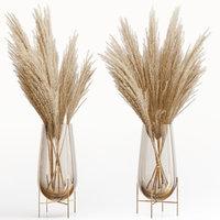 Big dried flower pampas grass in glass vase 5