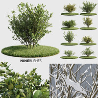 Nine Bushes (+GrowFX)