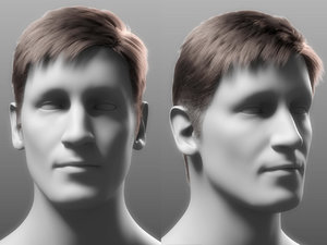 3D realistic male hair asset model