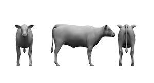 calf animal 3D model
