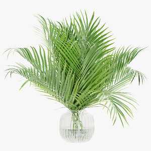 palm leaves 3D