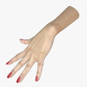 3D hand female modeled model