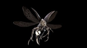 character flying bug 3D model