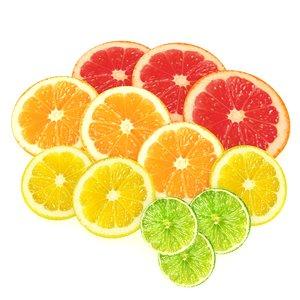 lemon lime grapefruit citrus 3D model